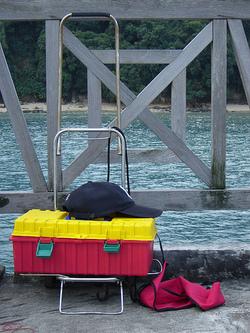 Fishcoffins